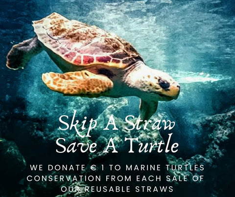 Eco Straw Collection - Save The Turtles - Chocolate & More Delights