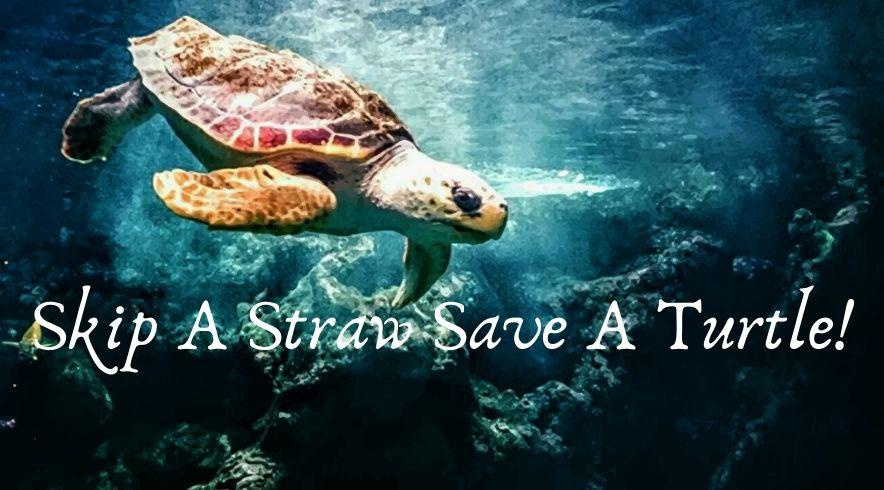 Save The Turtles - One Straw At A Time