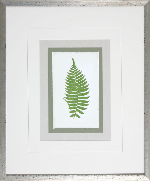 FERN 2  **EXCLUSIVE**
