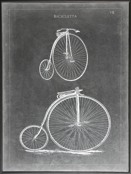 VINTAGE BICYCLE II