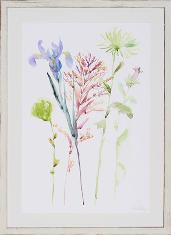 WATERCOLOR FLORAL STUDY III
