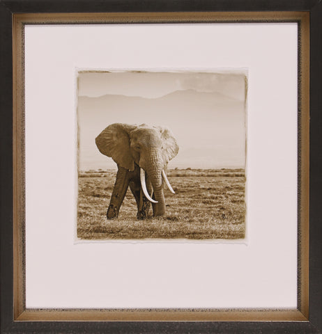 BIG TUSKED ELEPHANT BOOKCASE