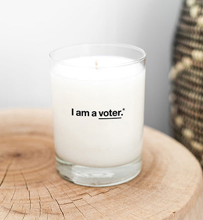 I am a voter.