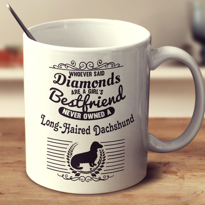 Whoever Said Diamonds Are A Girl's Bestfriend Never Owned A Long Haired Dachshund