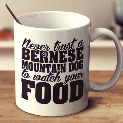 Never Trust A Bernese Mountain Dog To Watch Your Food
