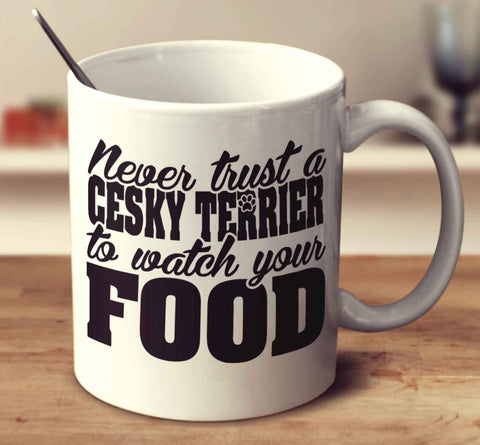 Never Trust A Cesky Terrier To Watch Your Food