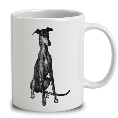 Spanish Greyhound Sketch