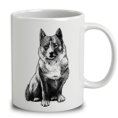 Swedish Vallhund Sketch