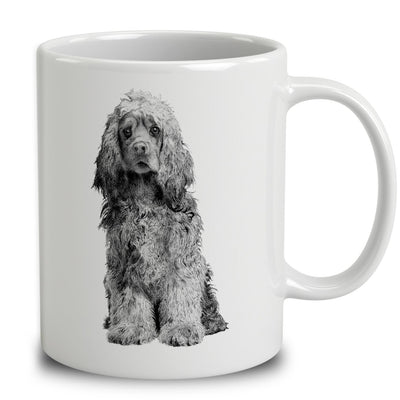 American Cocker Spaniel Sketch