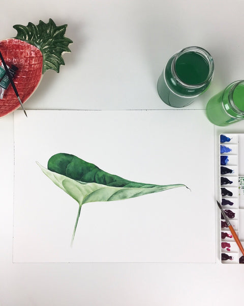 workshop de aquarela | verde é a cor | 27/07