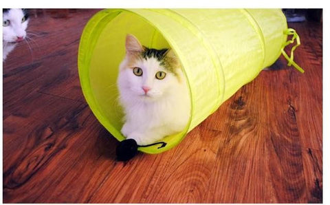 Fold-able Play Tunnel for Cats - 25 Main Street  - 1
