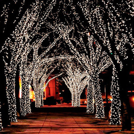 17-Meter String of 100 LED Solar Powered Fairy Lights - 25 Main Street  - 1