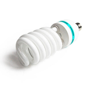 105W 6500K CFL Daylight Light Bulb