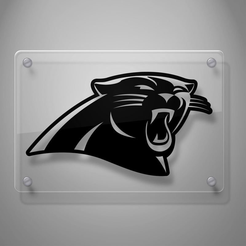 Carolina Panthers #416