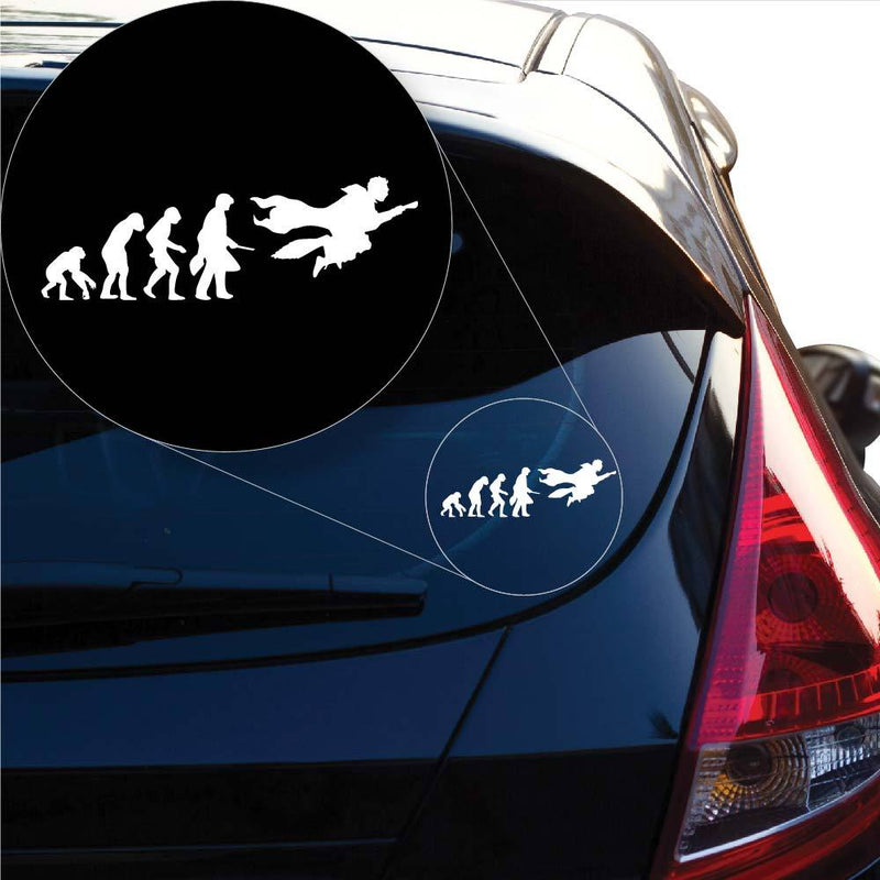 Harry Potter evolution Decal Sticker for Car Window, Laptop and More # 1007