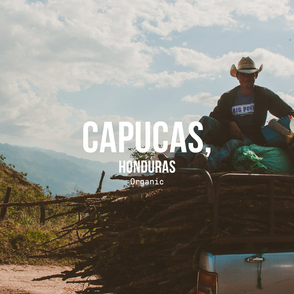 Capucas, Honduras | Organic - Irving Farm Coffee Roasters