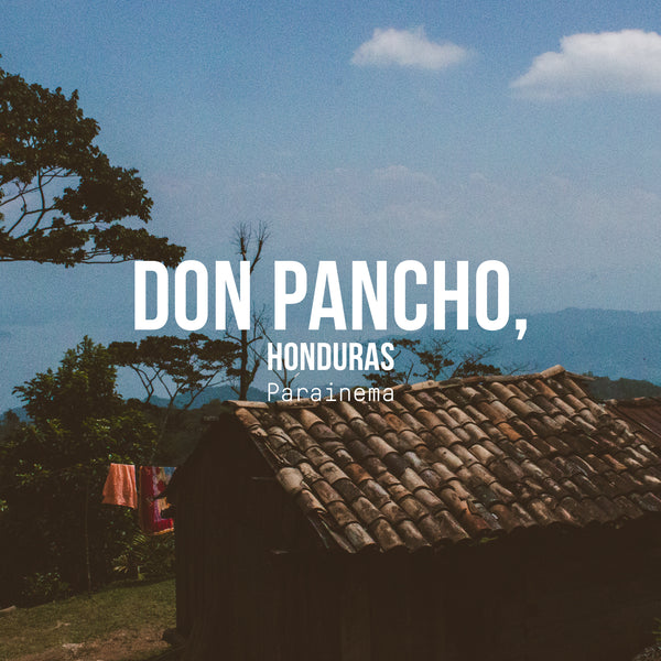 Don Pancho, Parainema, Honduras - Irving Farm Coffee Roasters