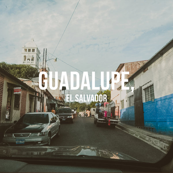 Guadalupe, El Salvador - Irving Farm Coffee Roasters