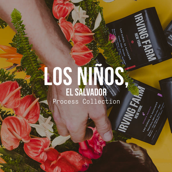 Los Niños, El Salvador | Process Collection - Irving Farm Coffee Roasters