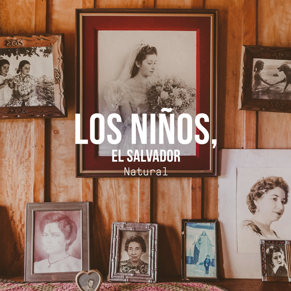 Los Niños Process Experiments, El Salvador | Natural Process - Irving Farm Coffee Roasters