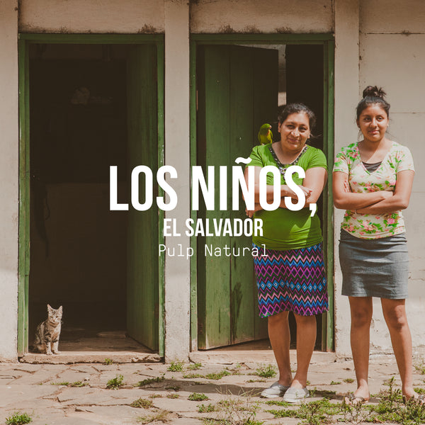 Los Niños Process Experiments, El Salvador | Pulp Natural Process - Irving Farm Coffee Roasters