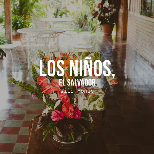 Los Niños Process Experiments, El Salvador | Wild Honey Process - Irving Farm Coffee Roasters