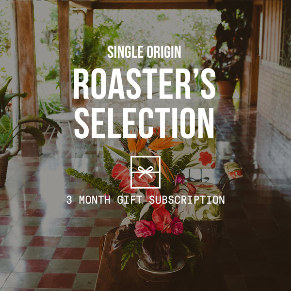 Roaster's Selection | Single Origin <br> 2 BAGS / MONTHLY / 3 MONTHS