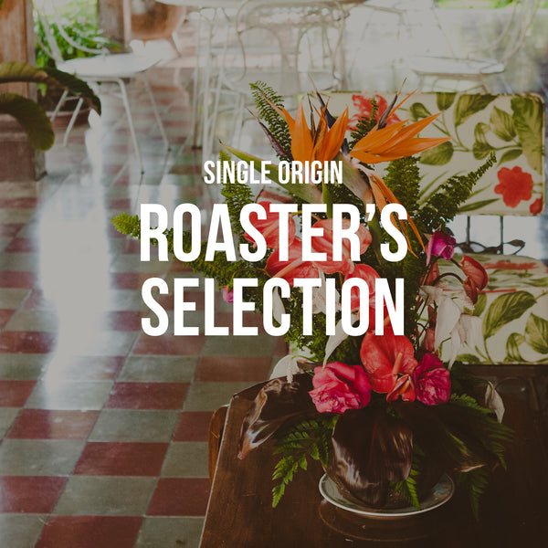Roaster's Selection | Single Origin - Subscription Only