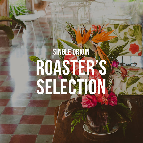 Roaster's Selection | Single Origin <br> 3 BAGS / MONTHLY / 12 MONTHS - Irving Farm Coffee Roasters