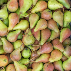 Pear White Balsamic Vinegar - A Taste of Olive - 1