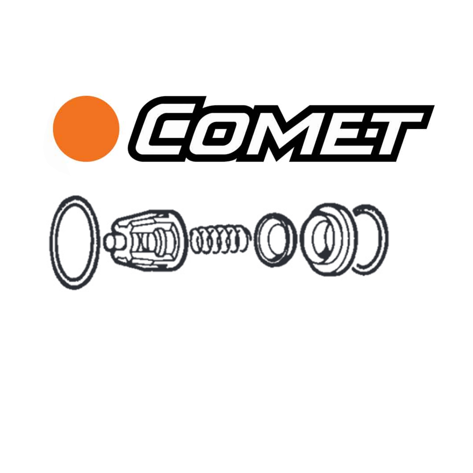 Comet Pump Check Valve Repair Kits