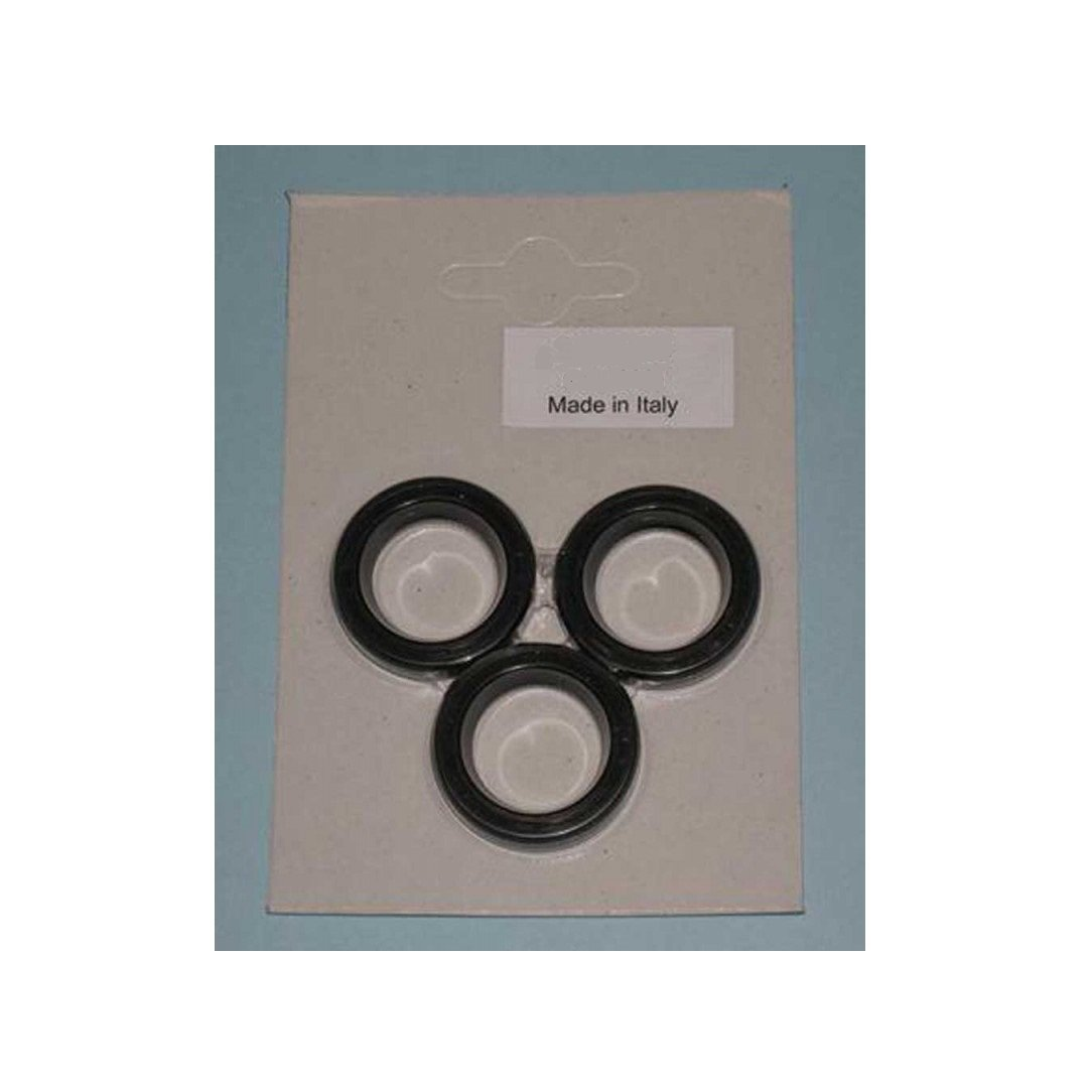 Legacy Oil Seal Kits (Hotsy Hawk Landa Karcher Shark)