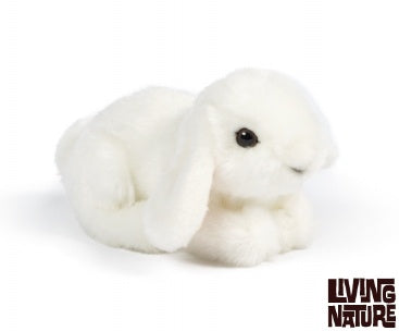 Small Lop Eared Bunny Soft Toy