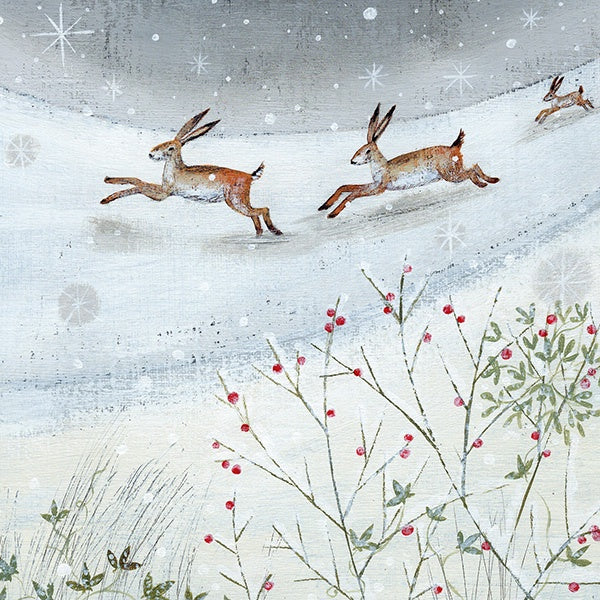 Hares in Snow Pack of 6 Charity Cards