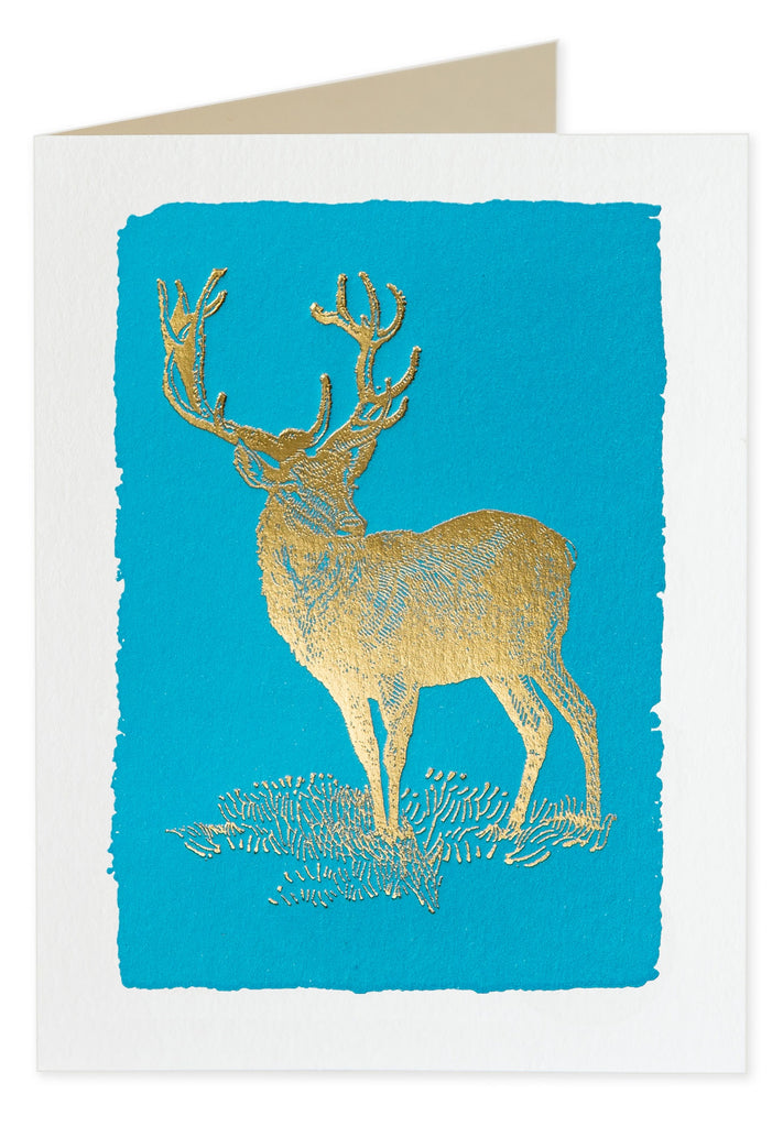 Foiled Deer on Blue Pack of 5 Christmas Cards