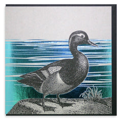 Duck Foiled Card