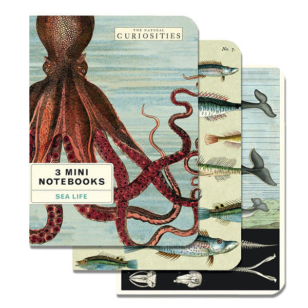 Sea Life Set of 3 Mini Notebooks