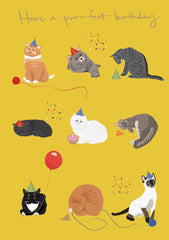 Nine Cats with Hats Birthday Card