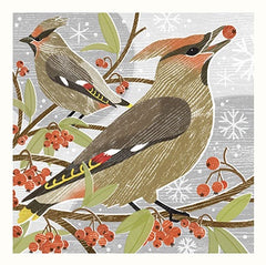 Waxwings pack of 5 Christmas Cards