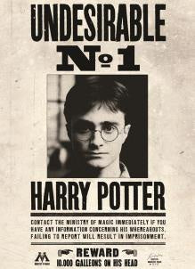 Undesirable No1 Harry Potter Card