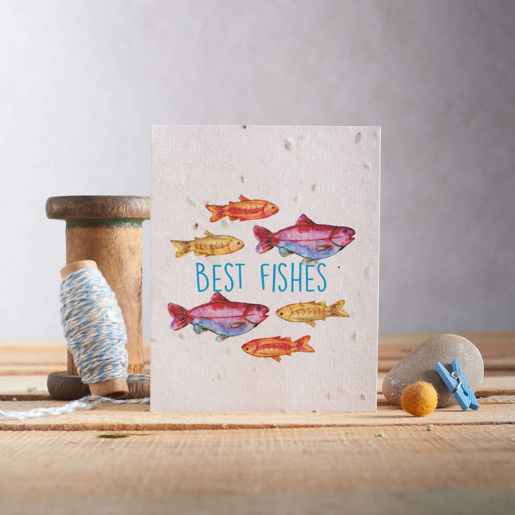 Best Fishes Seed Card