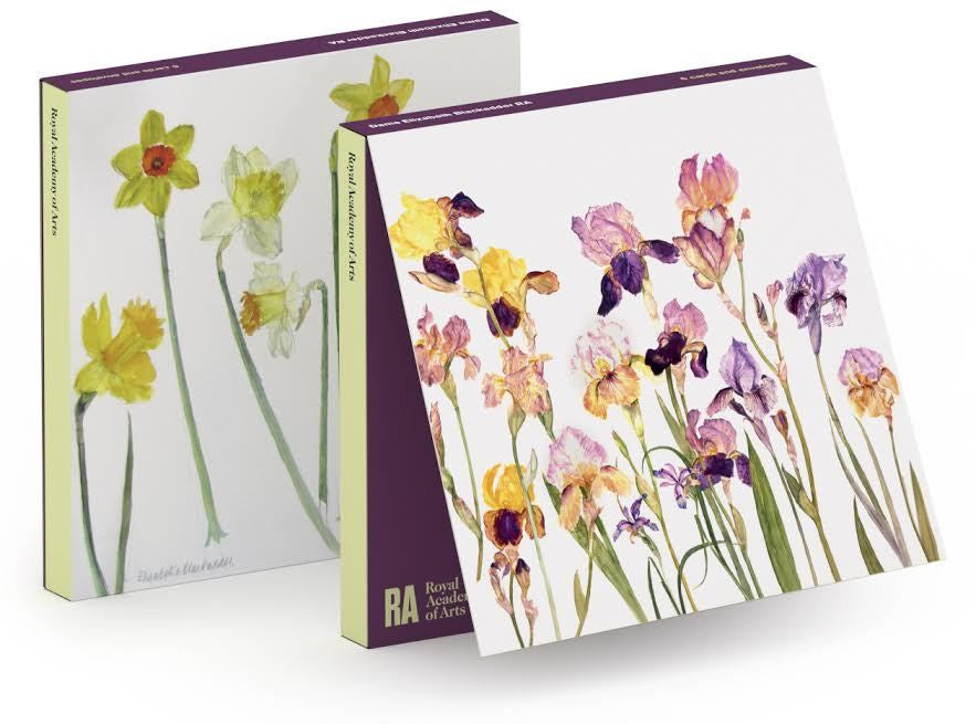 Elizabeth Blackadder Daffodils Notecard Wallet