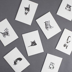 Pack of 8 Pussycat Cards