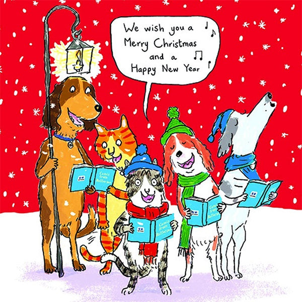 Christmas Singing Images.Dogs Singing Box Of Christmas Card