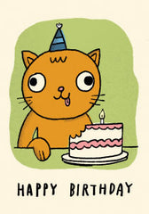 Silly Cat and Birthday Cake