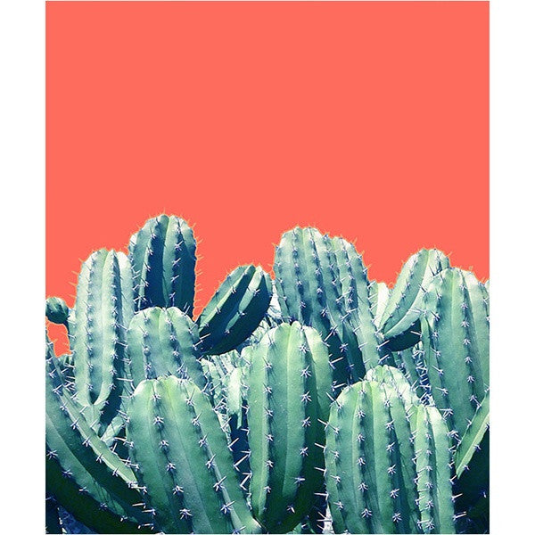 Cactus on Coral Card