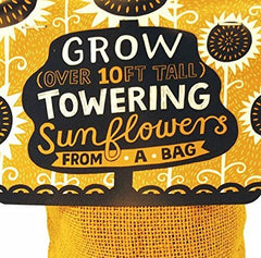 Towering Sunflowers Bag Plant Kit