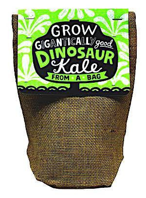 Gigantially Good Dinosaur Kale Bag Plant Kit