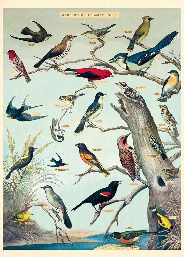 Audubon Bird Sheet Wrap