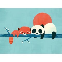 Panda And Raccoon Card